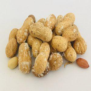 peanuts wholesale price nuts bazaar kernelo nutskala