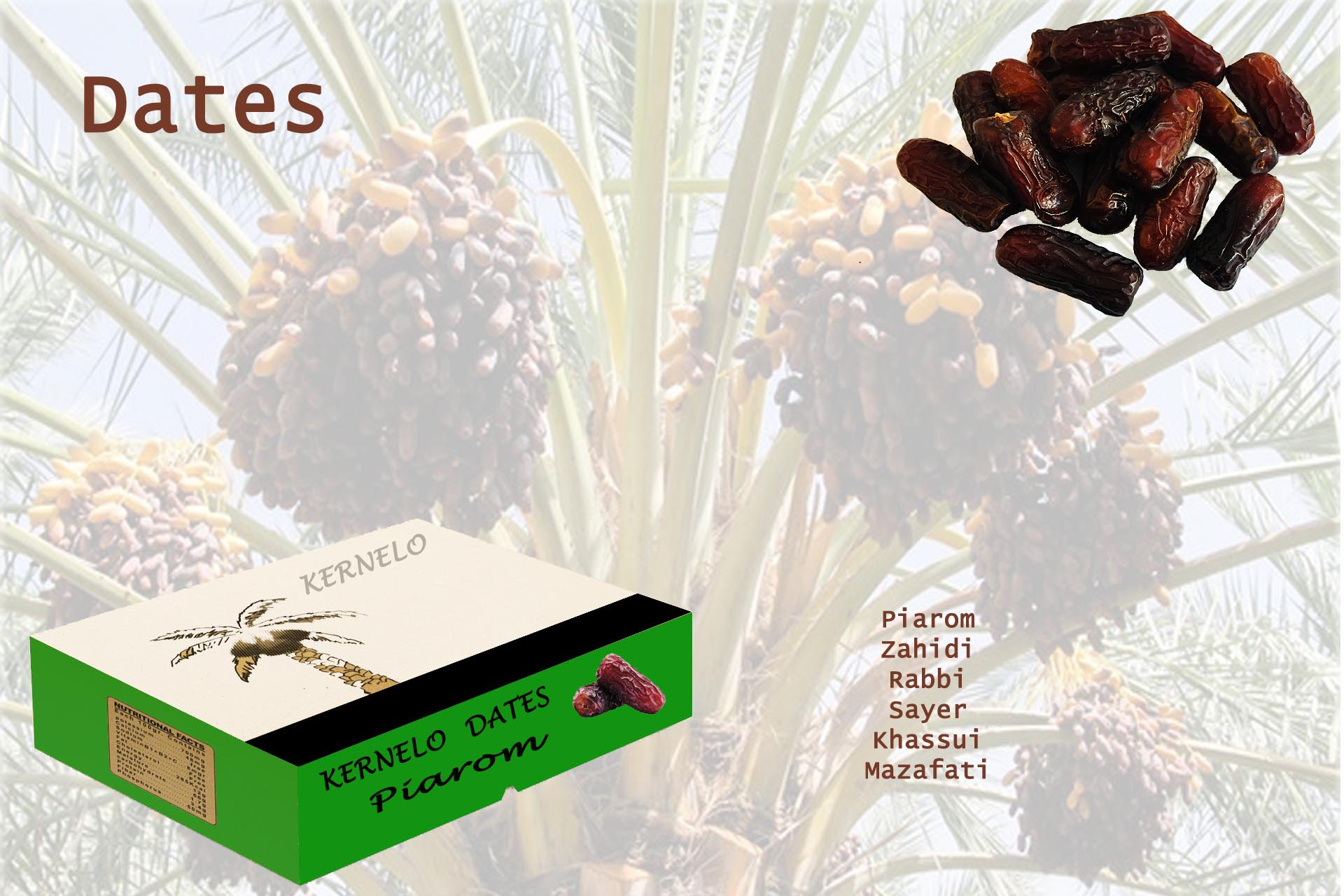 kernelo dates wholesale piarom zahidi nutskala price bazaar syrup chopped